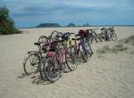Bicicletada 2008