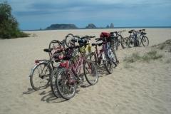 2008_bicicletada_1-28