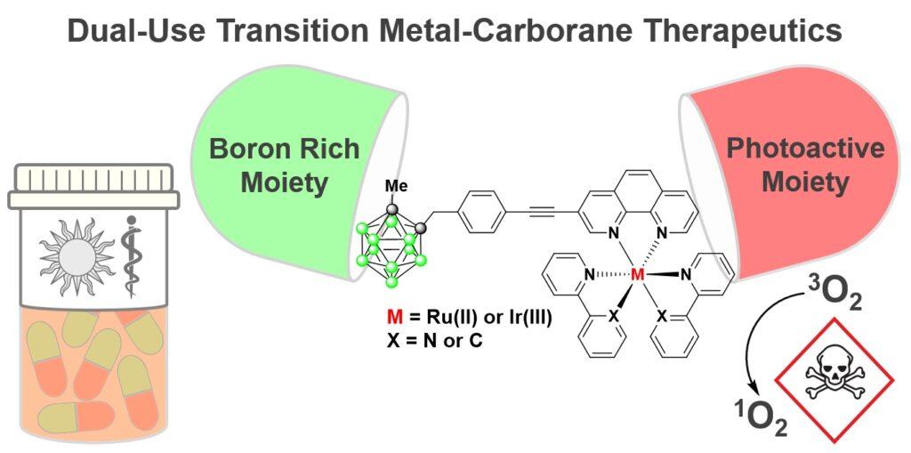 Ru(II) and Ir(III) phenanthroline-based photosensitisers bearing o-carborane: PDT agents with b…